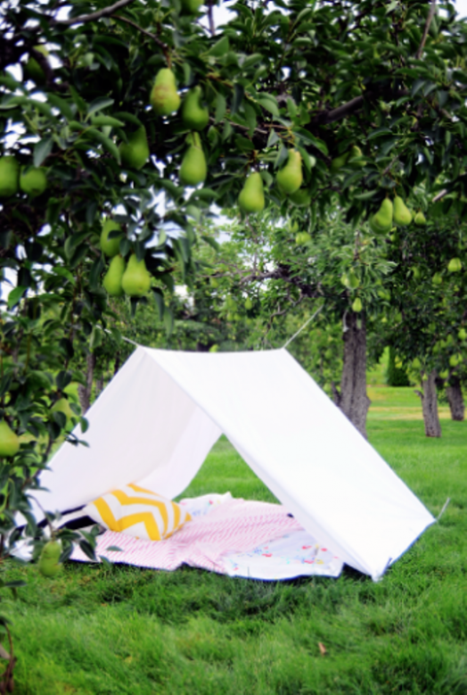 Canopy Tent & 8 Frugal DIY Backyard Ideas for Kids | Parenting Squad