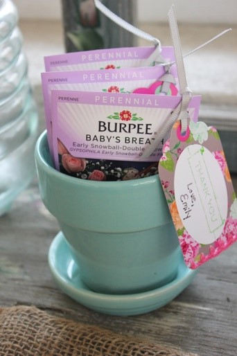 A Sprinkle of Fun Party and Decor Ideas for Sprinkle Showers