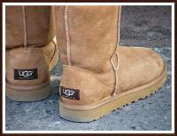 uggs.jpg