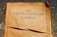 origin of species smaller.JPG