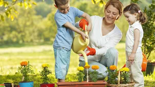 Starting A Family Garden Tips For Beginners Parenting Squad