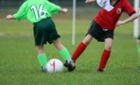 648830_soccer_game_goal_kick.jpg