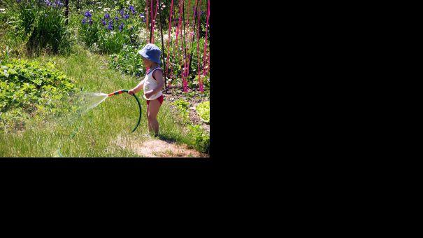 little_gardener.jpg